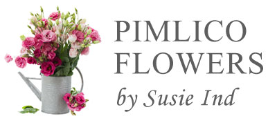 Pimlico Flowers